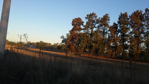una hectarea en paraje la lata