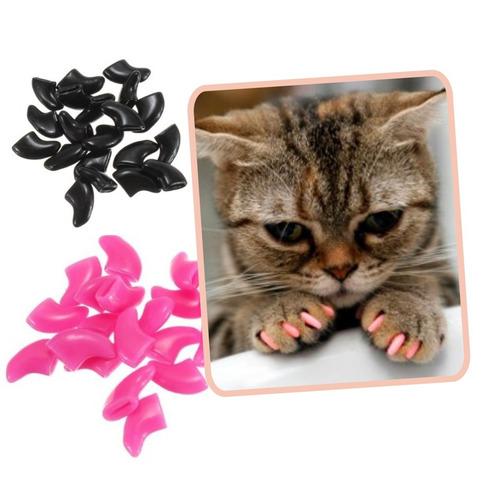 uñas gatos protector