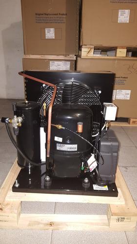 unidad condensadora 3 hp tecumseh frances r22 220v