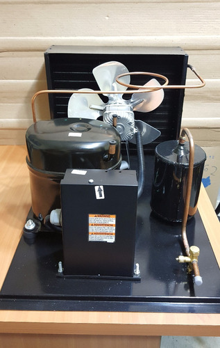 unidad condensadora tecumseh 1 hp 220v conservación