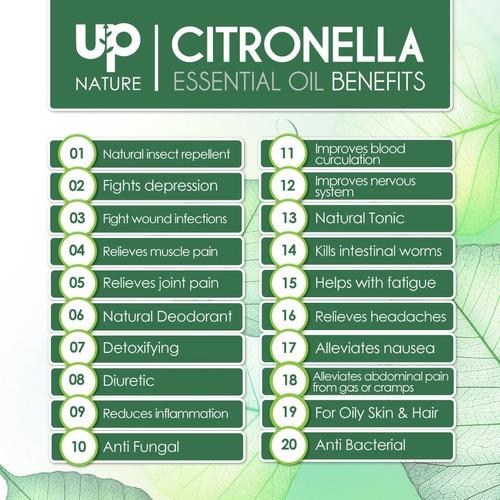 upnature el mejor aceite de citronela esencial 4 oz - pura s