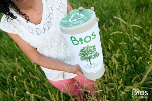 urna biodegradable sin semilla