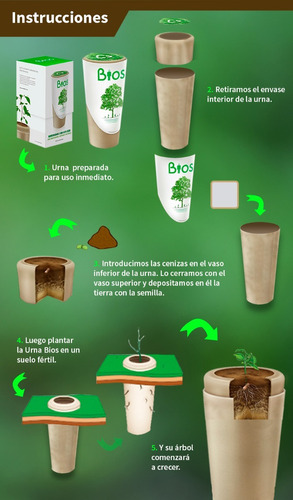 urna bios urna funeraria biodegradable.
