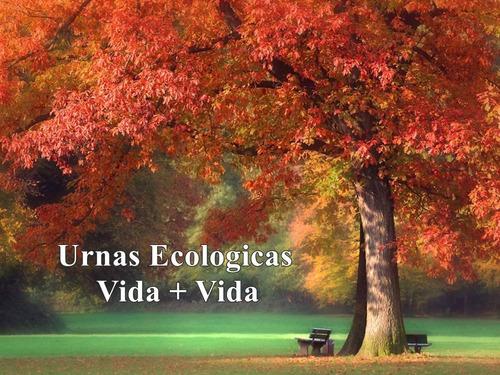 urnas ecologicas