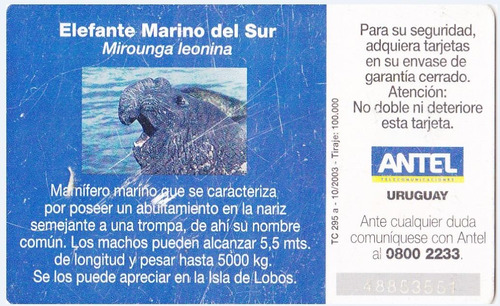 uruguay tarjeta teléfono tc nº295 elefante marino del sur