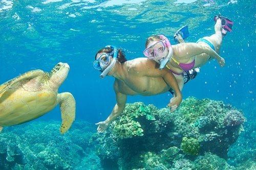 u.s. divers icon máscara y airent snorkel, amarillo