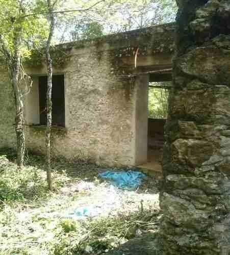 valladolid, 120 ha terreno plano con cenote y dos pozos.