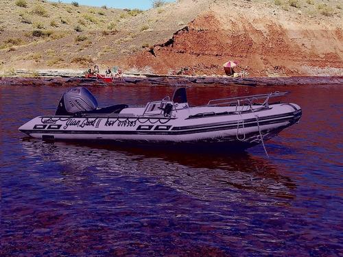 vdo pmto semirigido viking deluxe 6 mts full motor 4t 115 hp