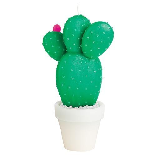 vela cactus! tamaño grande! sunnylife