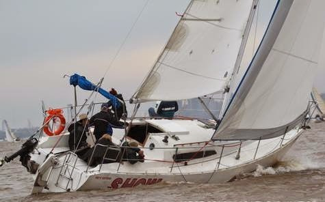 velero albatros 950 espacioso con orza para 8 personas