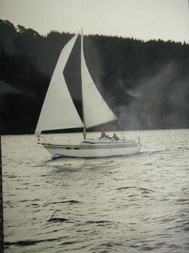 velero repunte 88