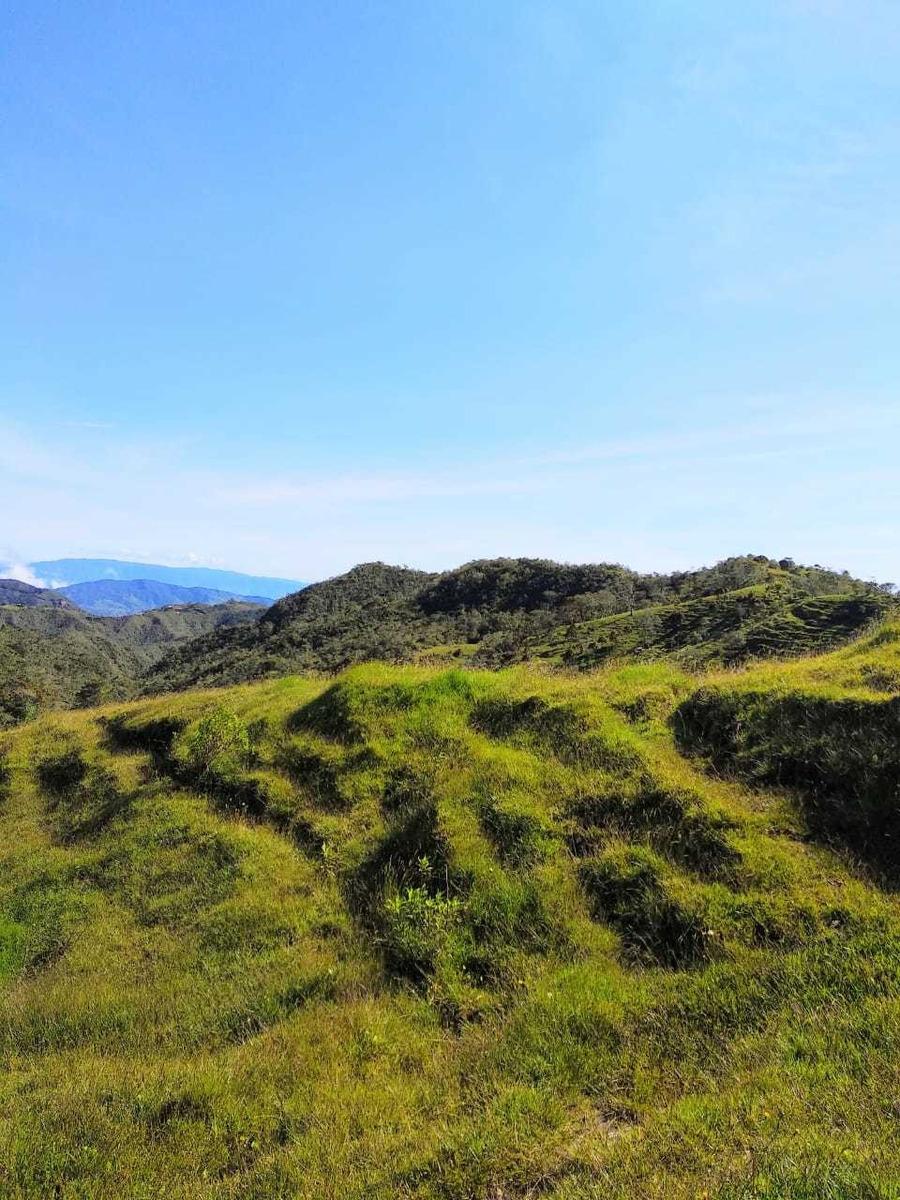 vencambio finca de 149 hectáreas