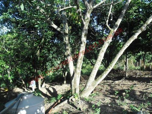 venda - chácara - colina santa izabel (tupi) - piracicaba - sp - d9449