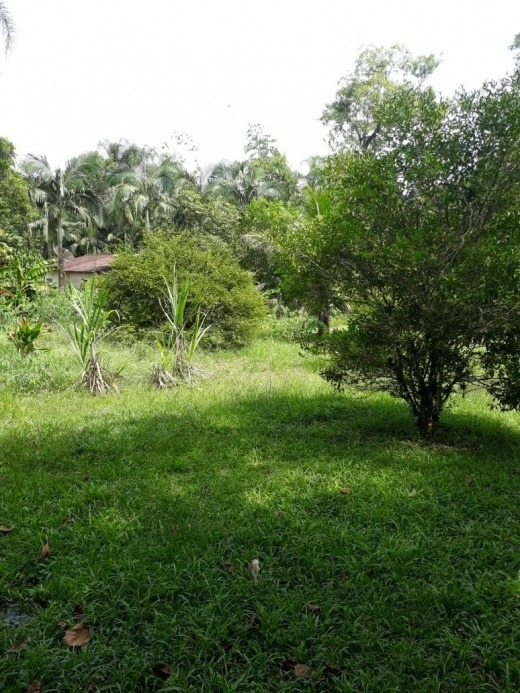 venda chácara com lago miracatu  brasil - 0169