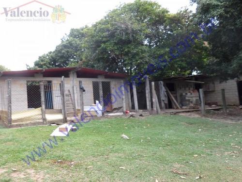 venda - chácara - fazenda santa lúcia - americana - sp - 1666c