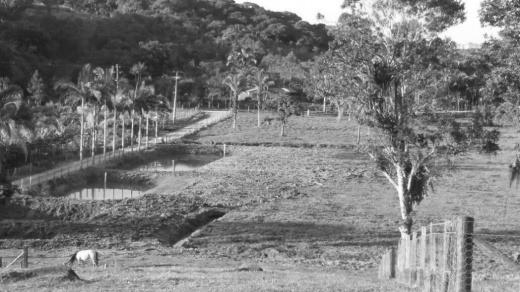 venda chácara matinhos  brasil - 1275t