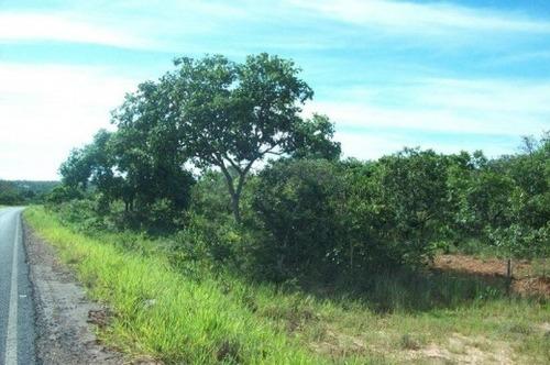 venda fazenda januária  brasil - 4035