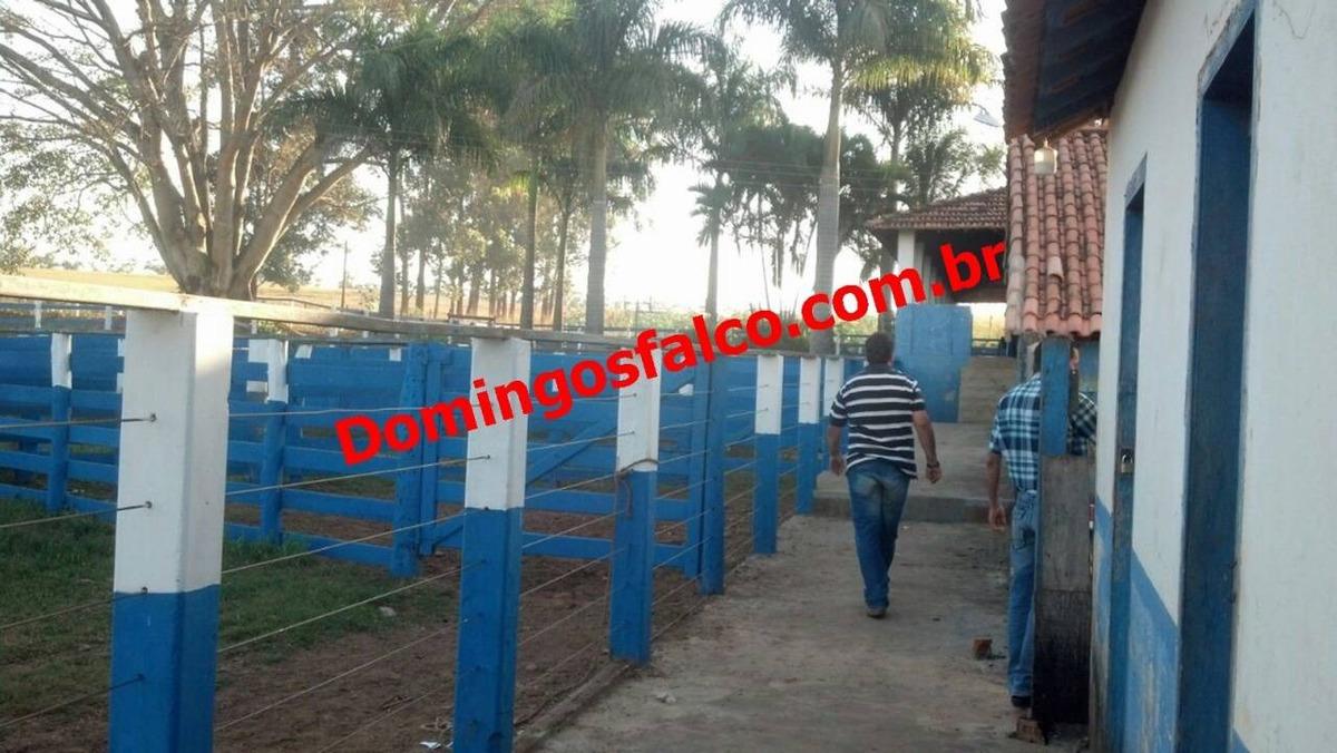 venda - fazenda - zona rural - formiga - mg - d0206