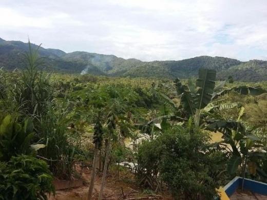 venda sítio miracatu  brasil - r372