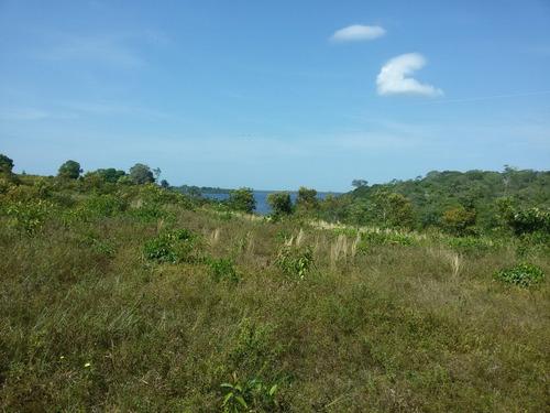 vende em iranduba excelente terreno para sítio - amazonas - am - 30683