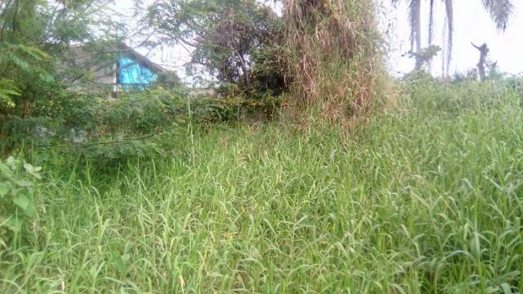 vende-se excelente terreno de 332 mt² - itanhaém 4836 | npc