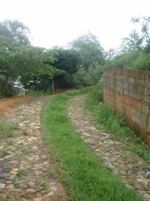 vende-se sitio ponte nova 12,2 ha situado às margens da rodovia mg 329 km 134 - 49