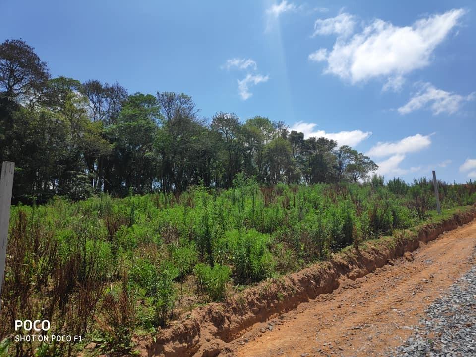 vende-se terrenos em ibiúna- apenas 10min do centro.-  gb