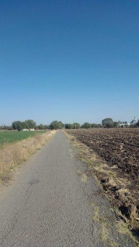 vende terreno carretera # 57 pedro escobedo qro. 1150 has