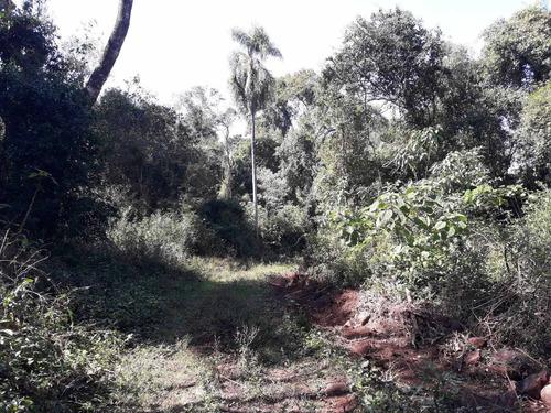 vendo 20 hectáreas de campo en cerro cora