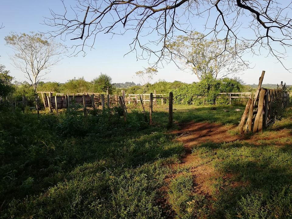 vendo 27 hectáreas de campo en general artigas