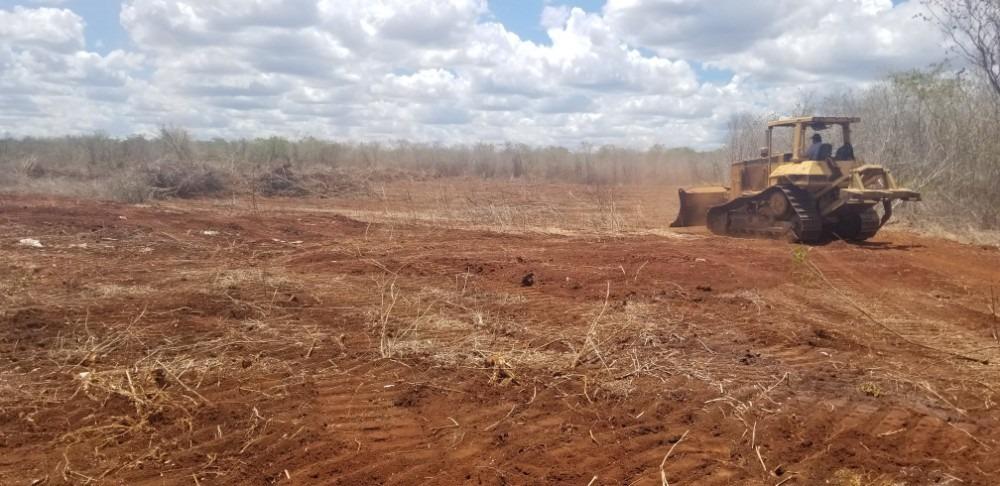 vendo 296 hectareas