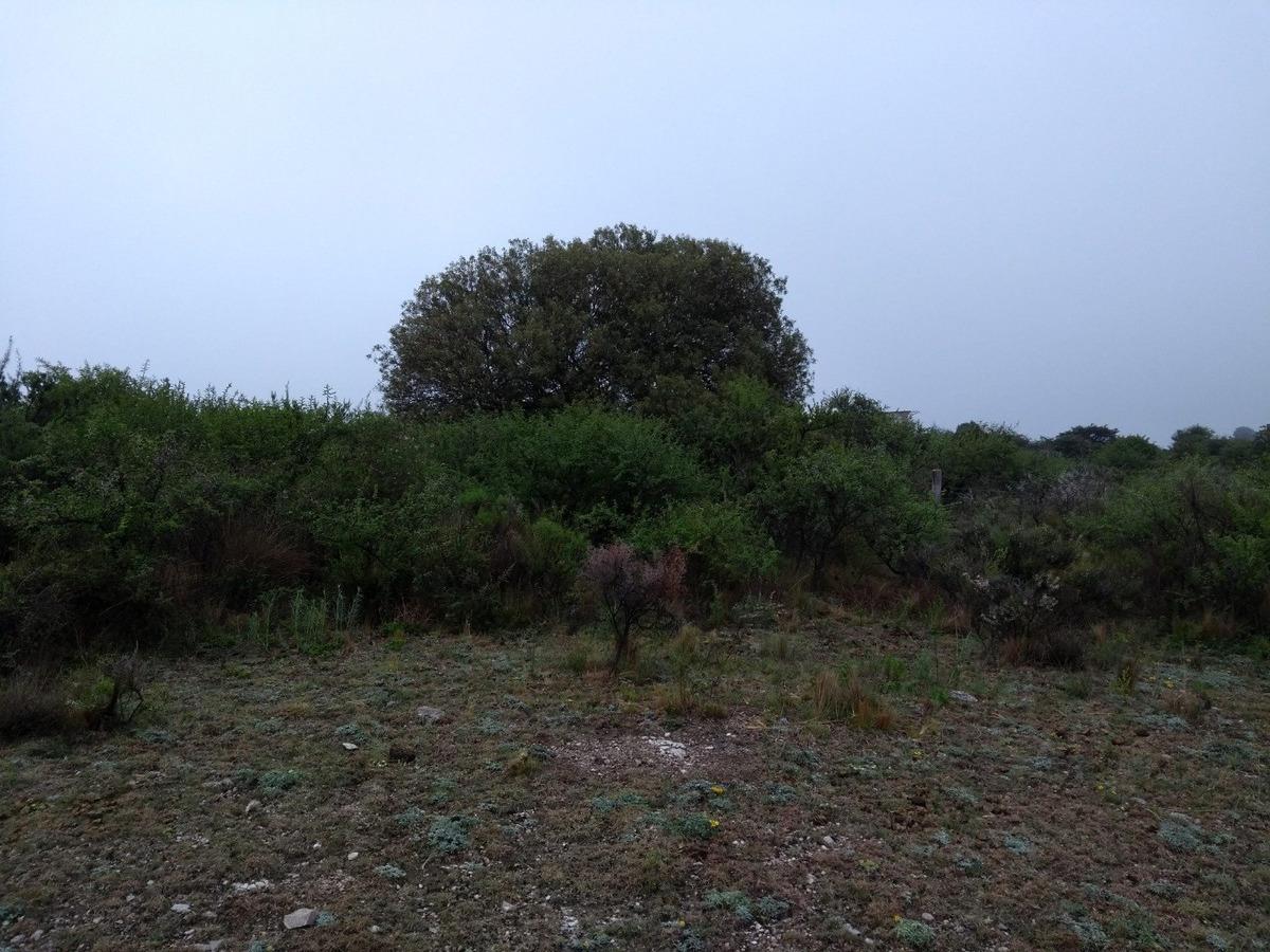 vendo 3 hectareas de campo en huerta grande