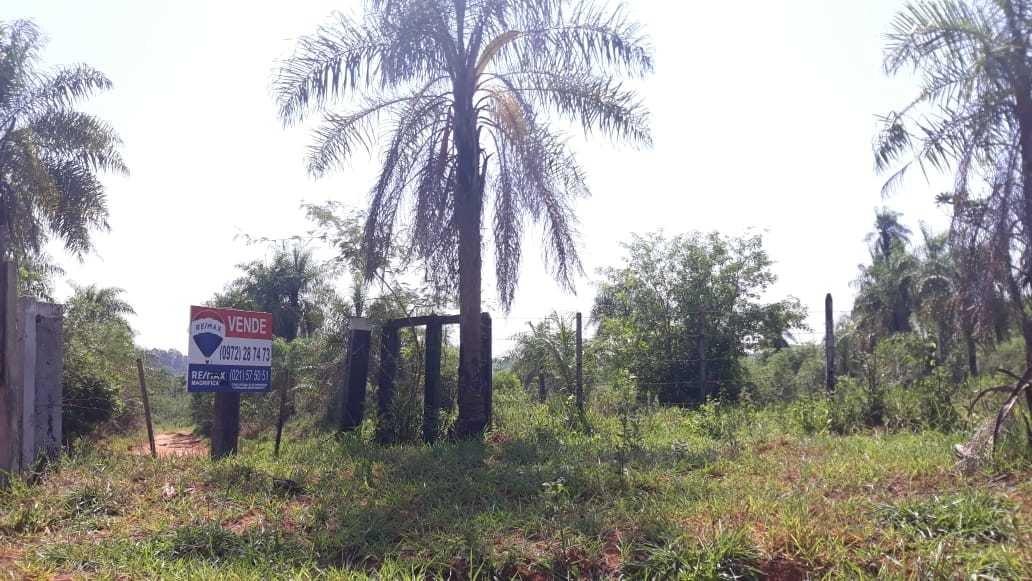 vendo 43 hectareas en san estanislao -curuguaty