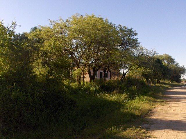 vendo 5 hectareas ( a 11 km de rincon. cba )