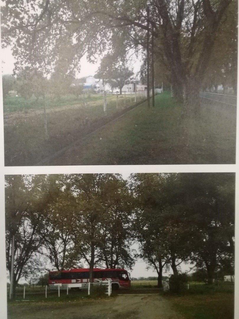 vendo 6 hectareas con galpon y casa sobre avenida en colonia caroya