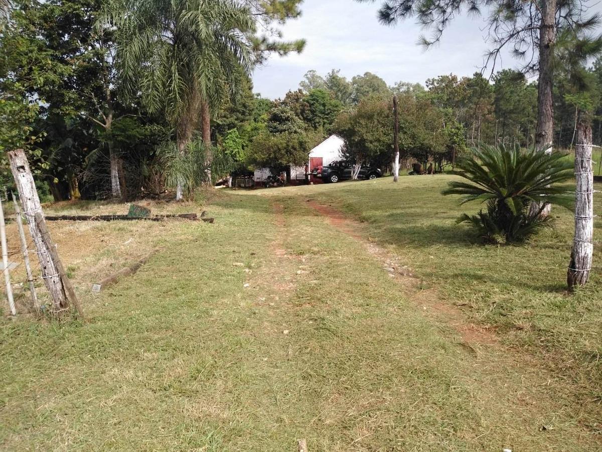 vendo 8 hectáreas de campo sobre av cocomarola