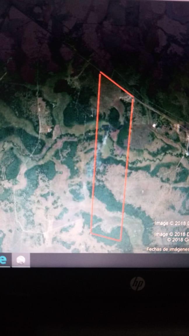 vendo 800 hectáreas ( formosa. capital )