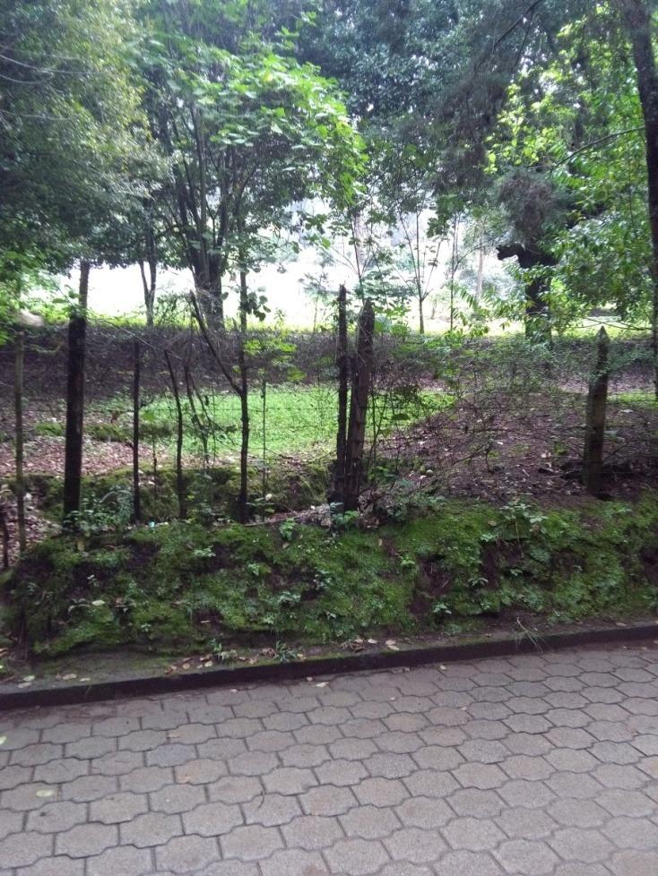 vendo belleza de terrenos,  1,324.70 vrs² cada uno
