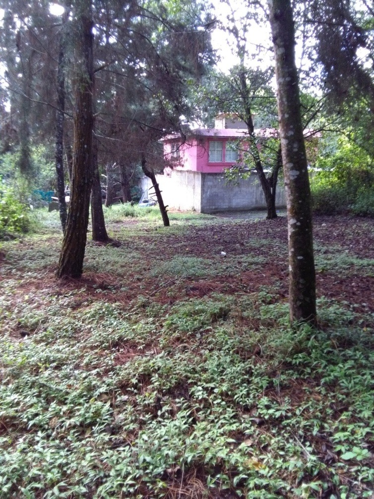 vendo bonito terreno  en san lucas sacatepeque (480.85 vrs²)