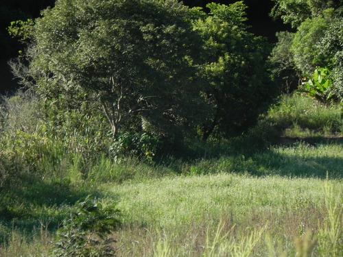 vendo cacrinha com ótima vista e fundo com árvores! gu
