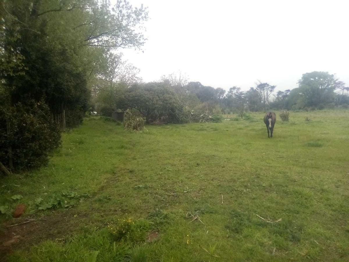 vendo campo 2 hectáreas
