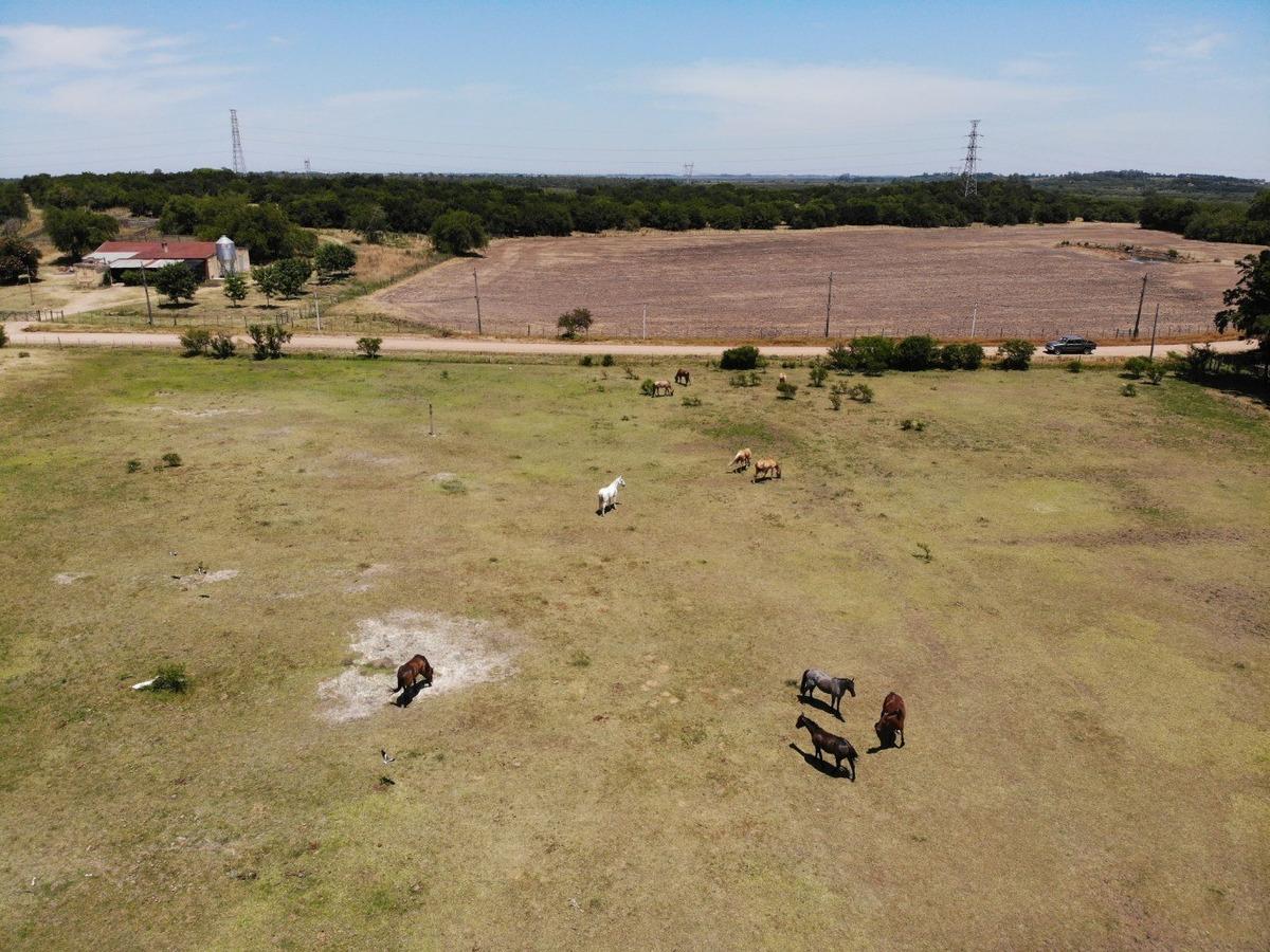 vendo campo 40 hectáreas en melilla inmobiliaria harretche