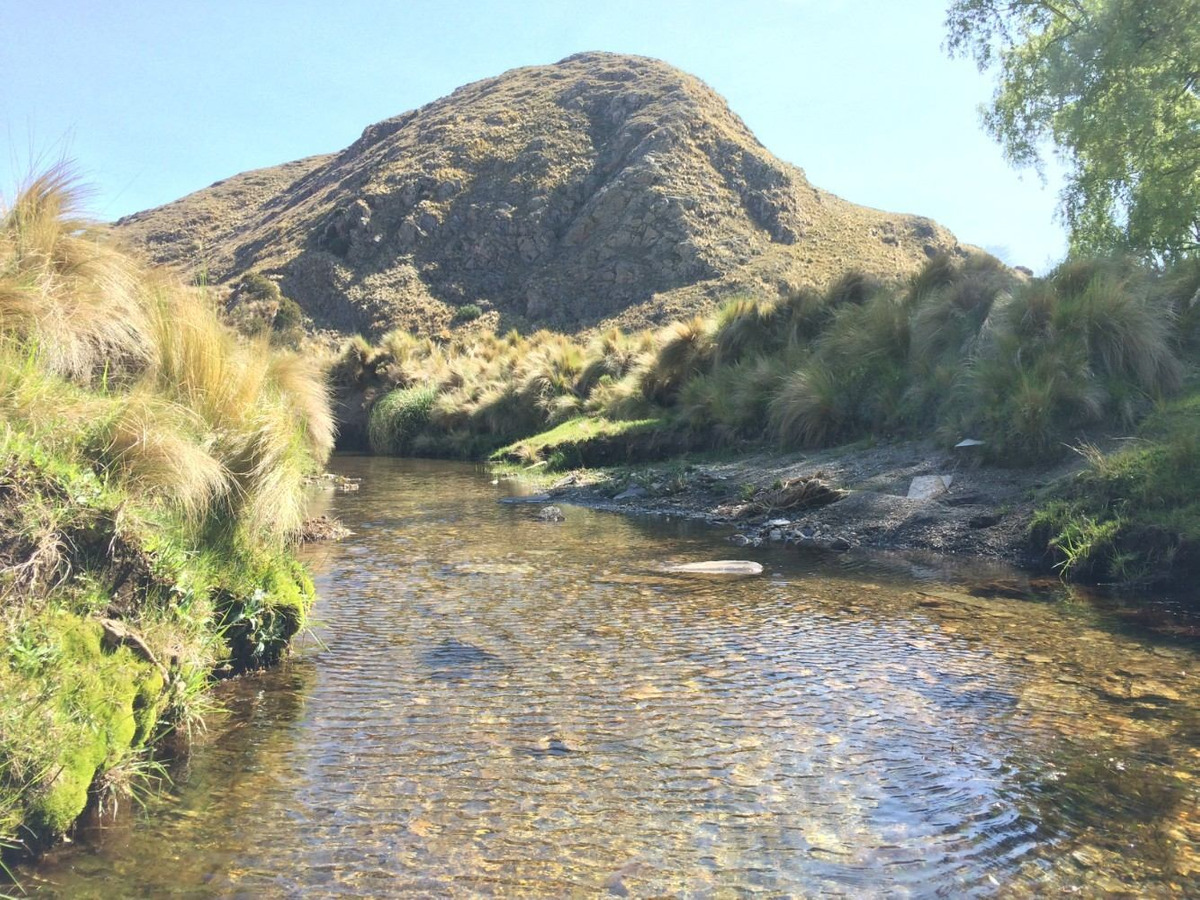vendo campo de 68 hectáreas en el valle de pancanta san luis