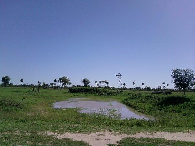 vendo campo de 8230 ha. ganadero/agrícola