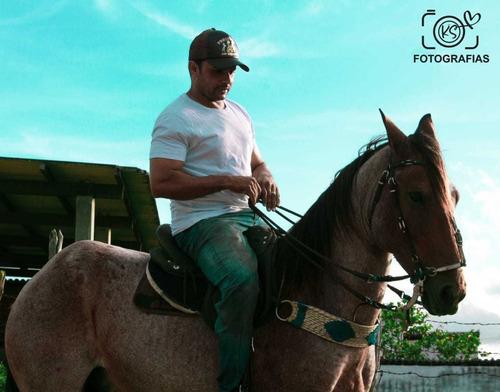 vendo cavalo rosilho