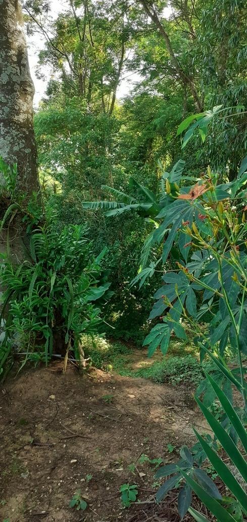 vendo chácara rio acima jundiaí
