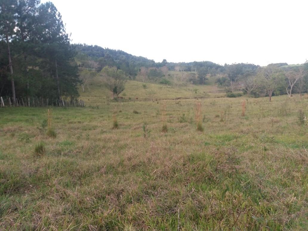 vendo chacra 50 hectáreas en misiones. todo al.dia
