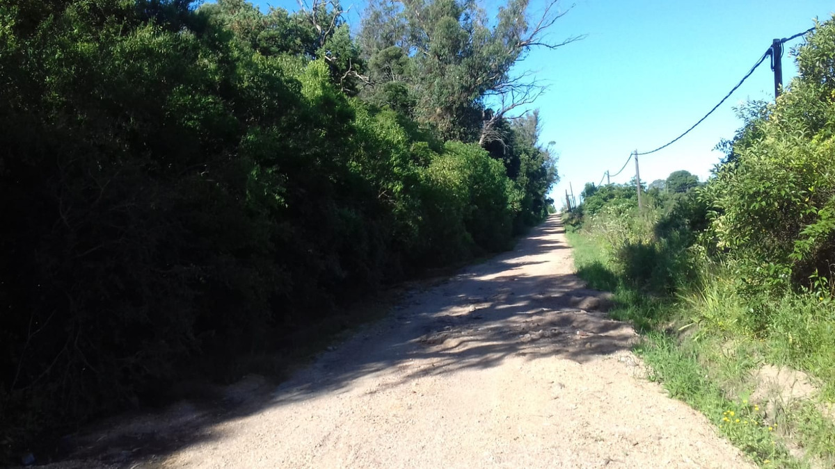 vendo chacras ruta 6 km 26  desde u$s 38000. arboles, vistas