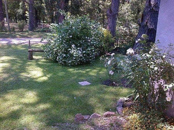 vendo chalet 3 ambientes zona bosque peralta ramos