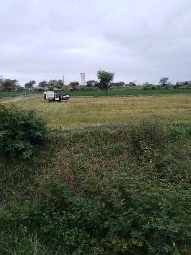 vendo cosechadora de arroz. 4lz-350.año 2015.operativa 100%.